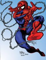 The Amazing Spider-Man by pascal-verhoef