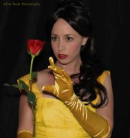 Belle Stock 1 by Tris-Marie