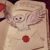 Wreck this Journal: Wrap Something With This Page by heather24242