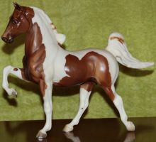 Breyer CH Sprinkles - Stock by Lovely-DreamCatcher