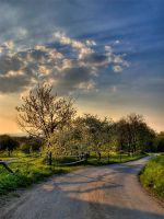 Way to the summer by Bruinen
