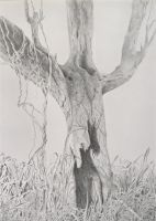 Pencil drawing: *The Crucifixion Tree* (42x30 cms) by Denish-C