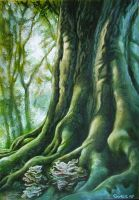 old tree in a magic forest by JSaurer