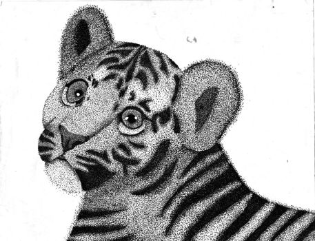 tiger stippling (DONE) by cjprevett