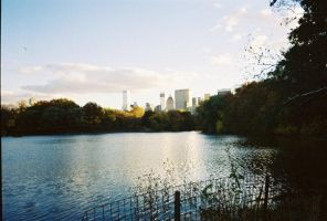 Central Park at sunset in the fall by jfahrlender