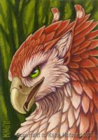 Red Feathers Green Eyes by KatieHofgard