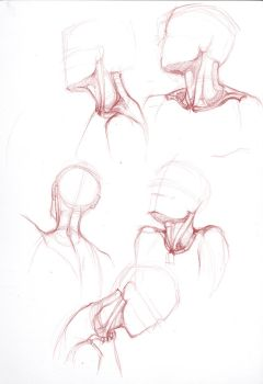 Neck study 1 by bouquiniste