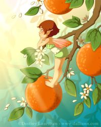 Tangerine Blossoms by Dalliann