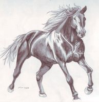 Horse6 by FATRATKING