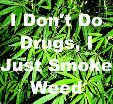 i dont do drugs i just smoke weed by SparklingStarsx