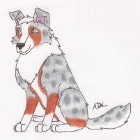 Tycho the Australian Shepherd by Angelwolf92