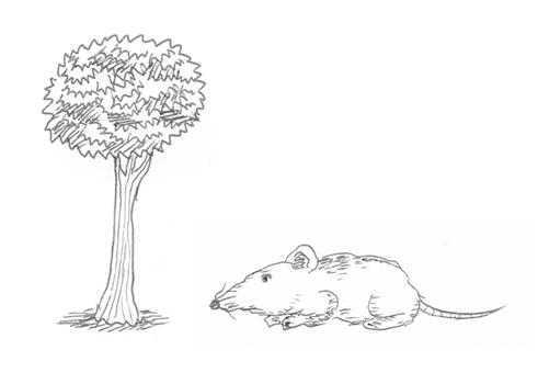 Tree And Rat by Griza300