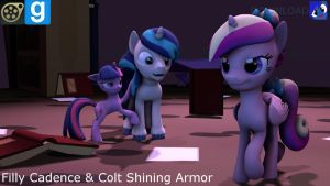 [SFM,Gmod] Filly Cadence n' Colt Shining armor[DL] by yoksaharat