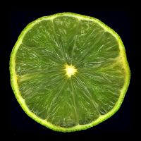 lime by Mittelfranke