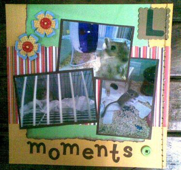 Scrapbooking by camilasilvestre