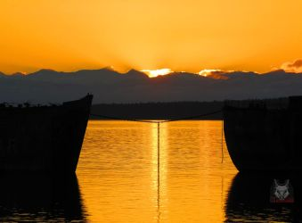 Bridging The Golden Sunset by wolfwings1