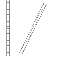 Ladder by ditney