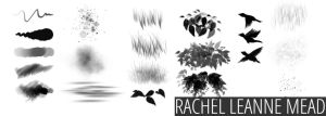 The RLM Brush Collection by ImRachelBradley