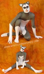 Grey spandex husky , 3-of-3 by Mystic-Creatures