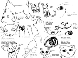 Cat Studies 1 - 1 by radstylix