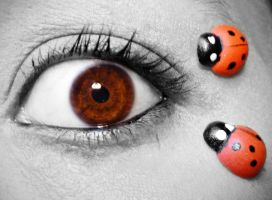 Lady bug by catarinamzfernandes