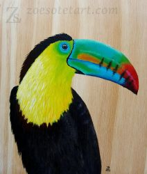 Toucan by ZoeSotet