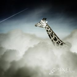 above the clouds by Fussel2112