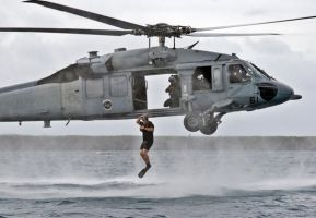 SAR Exercise by sublogic