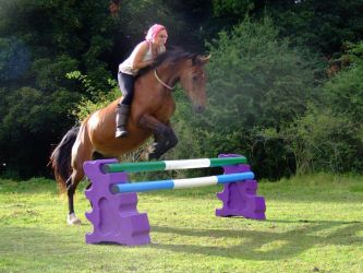 Freestyle Jumping (Bareback and Bridleless) 2ft6 by StarCrossedPsycho