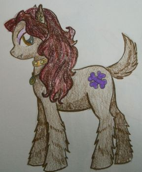 Clawdeen Pony by dead-kittens3