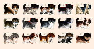 cat adoptables  {OPEN 1/15} by HappyHappyA
