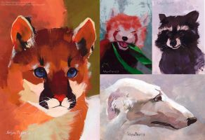 Gouache study. Animals. by SatynaPaper