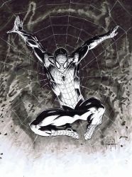 2014 Spiderman copic sketch by JasonMetcalf