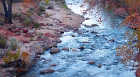 Follow the River by DaisyDinkle