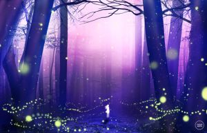 dance of the fireflies. by sugarmints