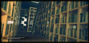 Library 2010 by junaidplaner