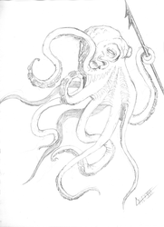 Octopus Study by cakinsey1991