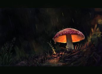 Lonely Mushroom by VirginiaSoares