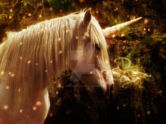 Unicorn with fairy close-up by PIERCED6966