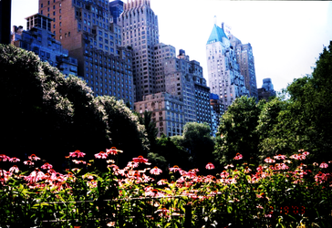 central park by swen1031