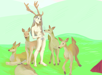 there are deer in the house by maa-chaan
