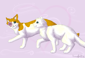 Valentine's Day 2017 - Cloudtail and Brightheart by Snowfall16