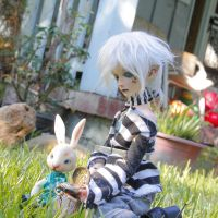 Little White Rabbits by 7AirGoddess3