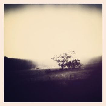 Where We Met by intao