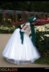 Vocaloid-Cendrillon: Roses by wtfproductionsskits