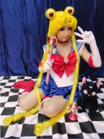 Sailor Moon S version by renataeternal