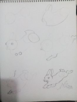 how to draw a rabit  by Raziel993