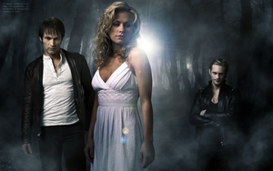 TRUE BLOOD wallpaper by mybeckett