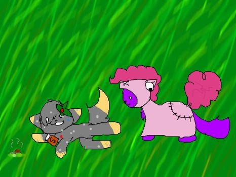 SNAILS SALT AND PONY CATS by weskersart
