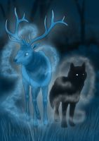 The Deer and the Wolf by Kumlay